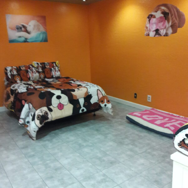 nefertitis puppy palace facility
